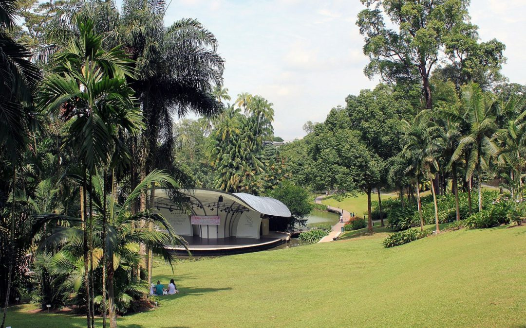8 Most Beautiful Parks and Gardens in Singapore